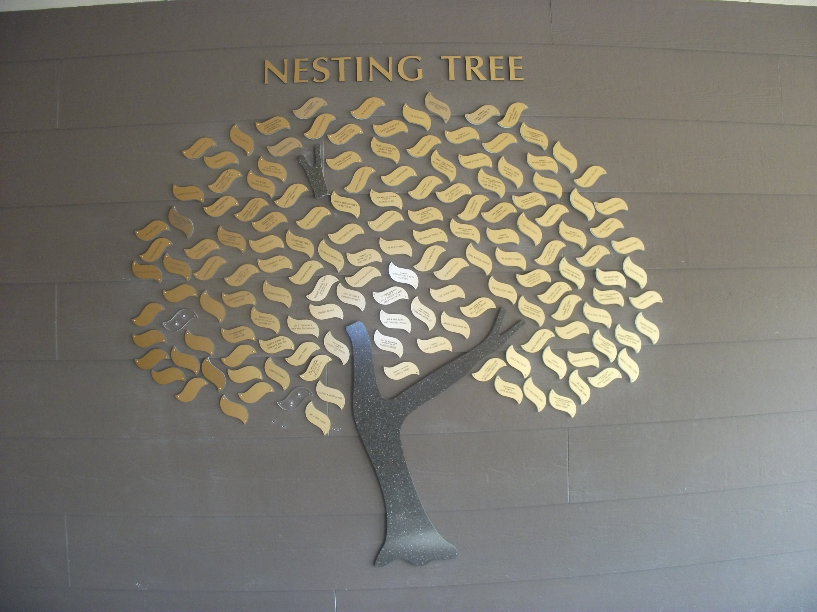 Nesting - Foothill Country Day School