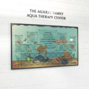 Click to Enlarge Aqua Therapy
