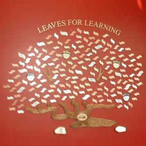 Click to Enlarge Leaves for Learning Model 485-6
